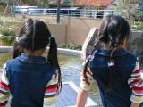 双子20061110